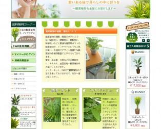 観葉植物の通販、販売、お祝いギフトの観葉植物のオアシス
