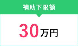 補助上限額30万円